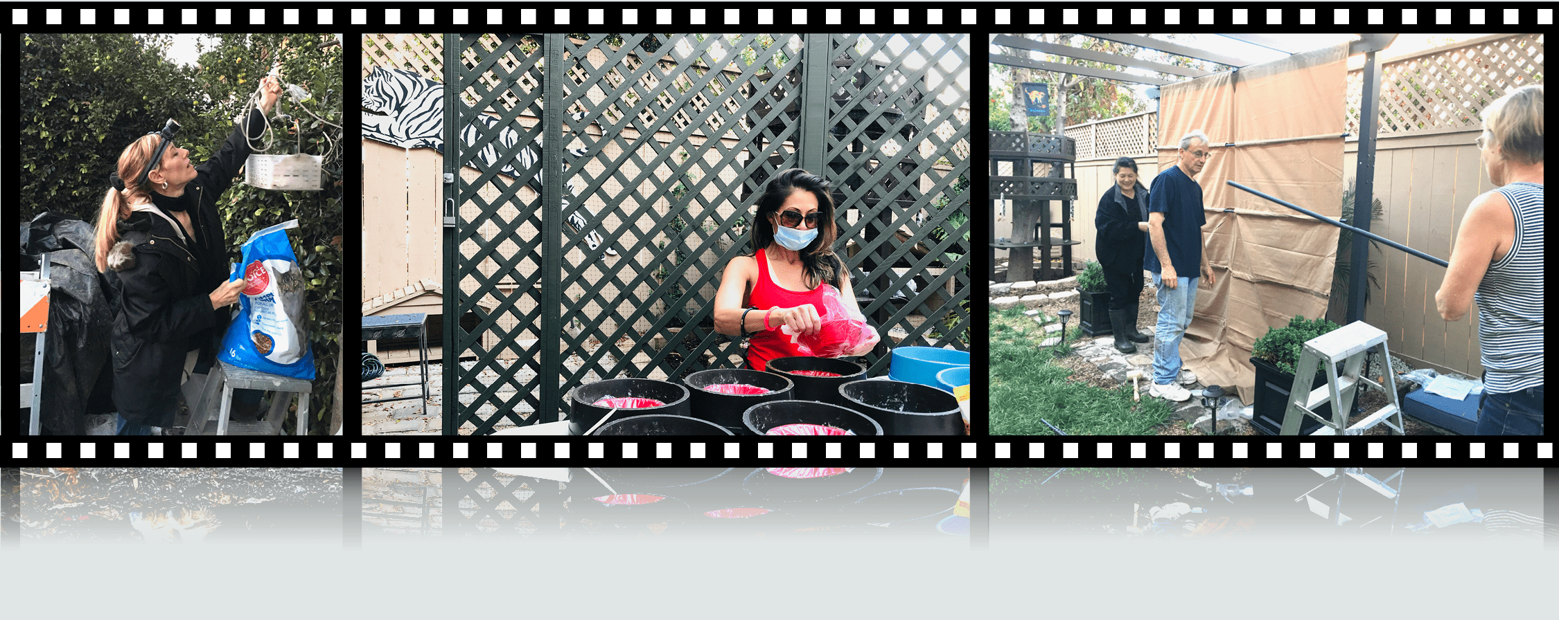 Filmstrip - Shanti's House Action Shots 2