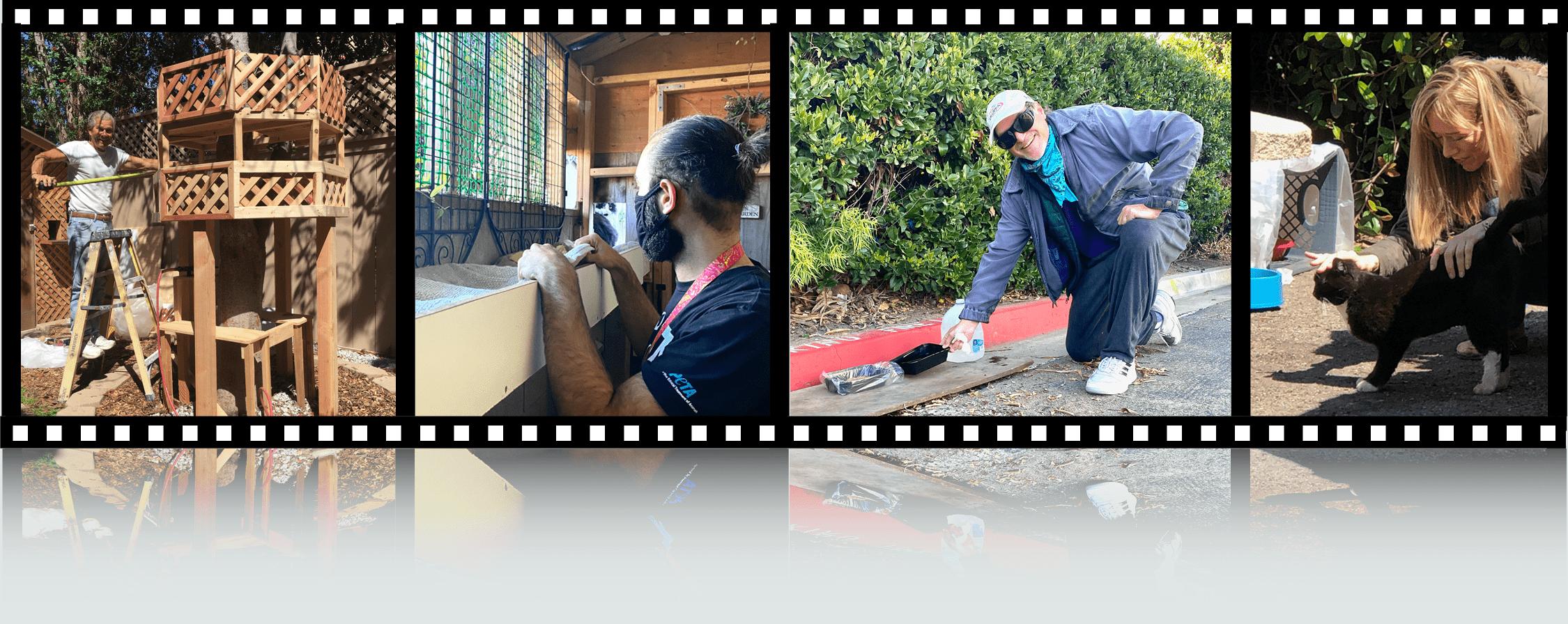 Filmstrip - Shanti's House Action Shots 4